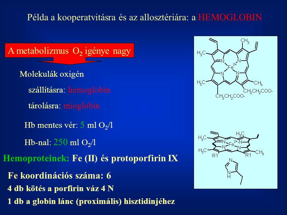 Példa a kooperatvitásra és az allosztériára: a HEMOGLOBIN