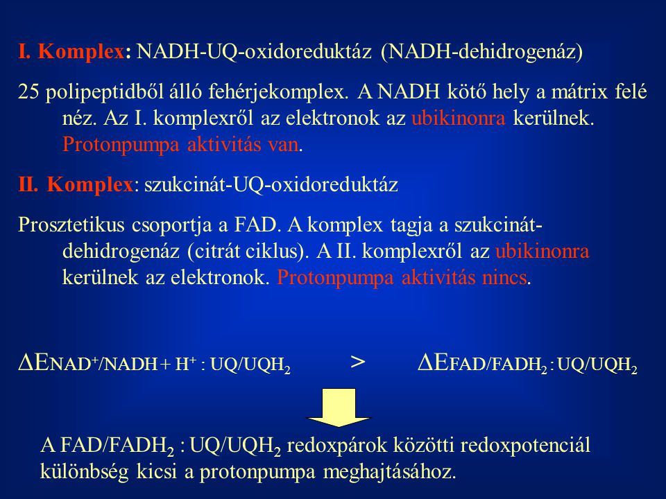 DENAD+/NADH + H+ : UQ/UQH2 > DEFAD/FADH2 : UQ/UQH2