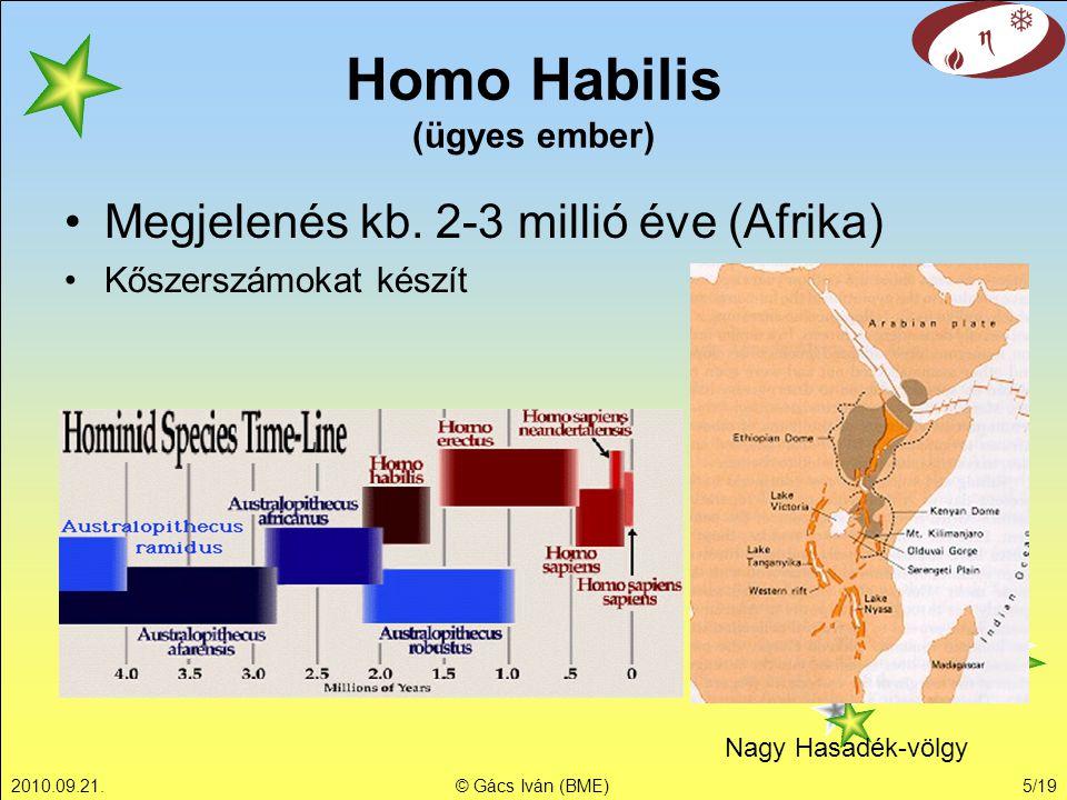 Homo Habilis (ügyes ember)