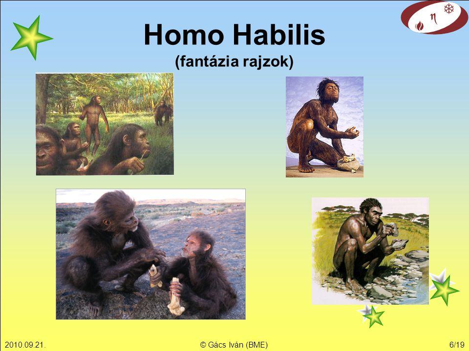 Homo Habilis (fantázia rajzok)