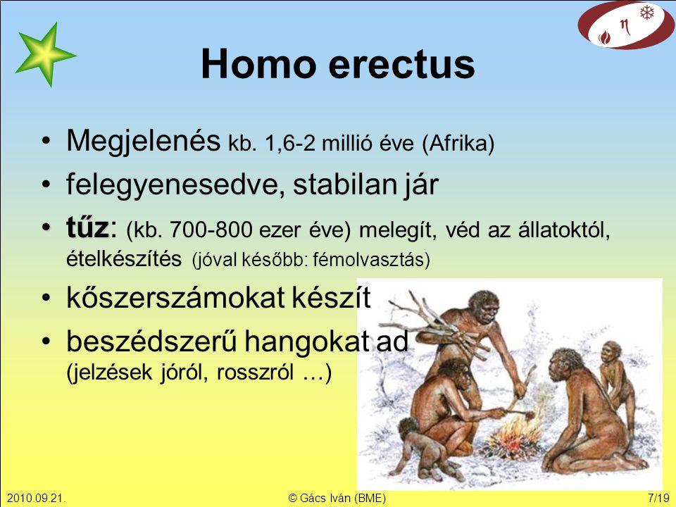 Homo erectus Megjelenés kb. 1,6-2 millió éve (Afrika)