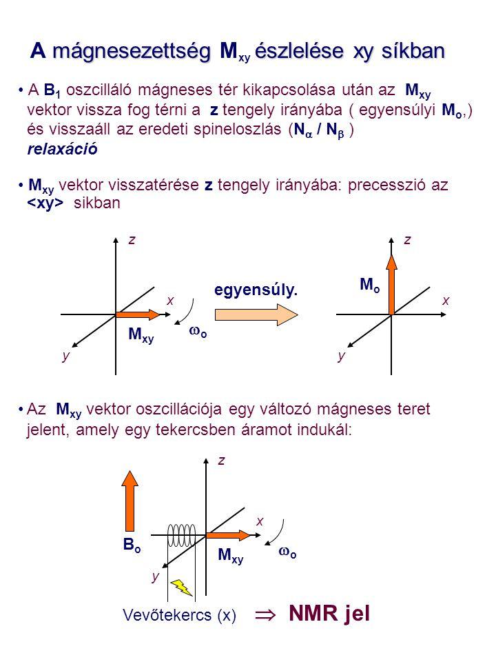 A mágnesezettség Mxy észlelése xy síkban