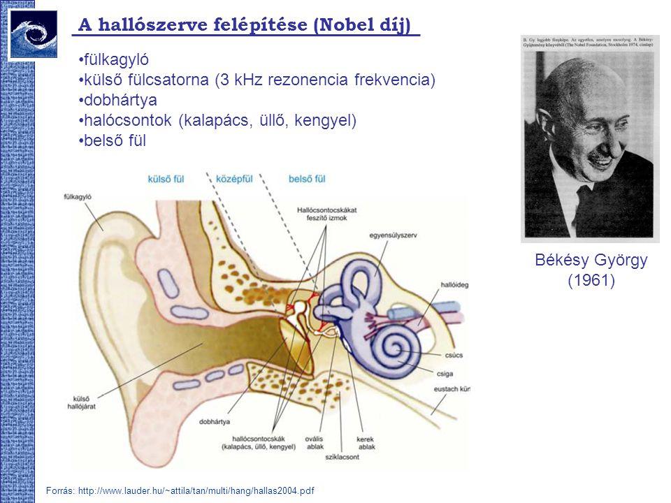 A hallószerve felépítése (Nobel díj)
