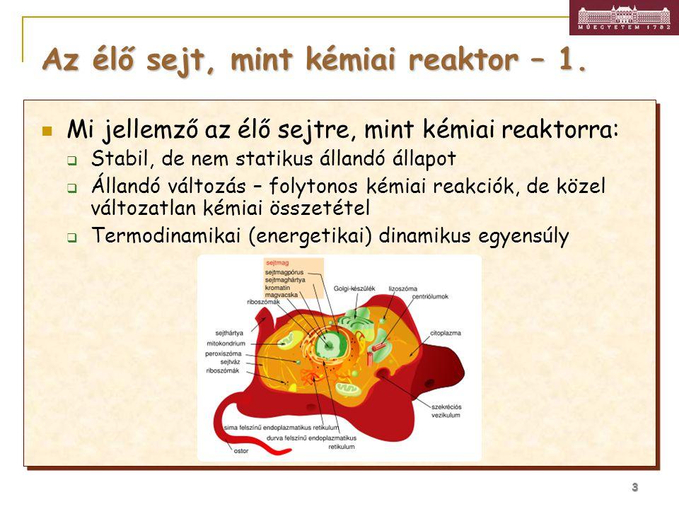 Az élő sejt, mint kémiai reaktor – 1.