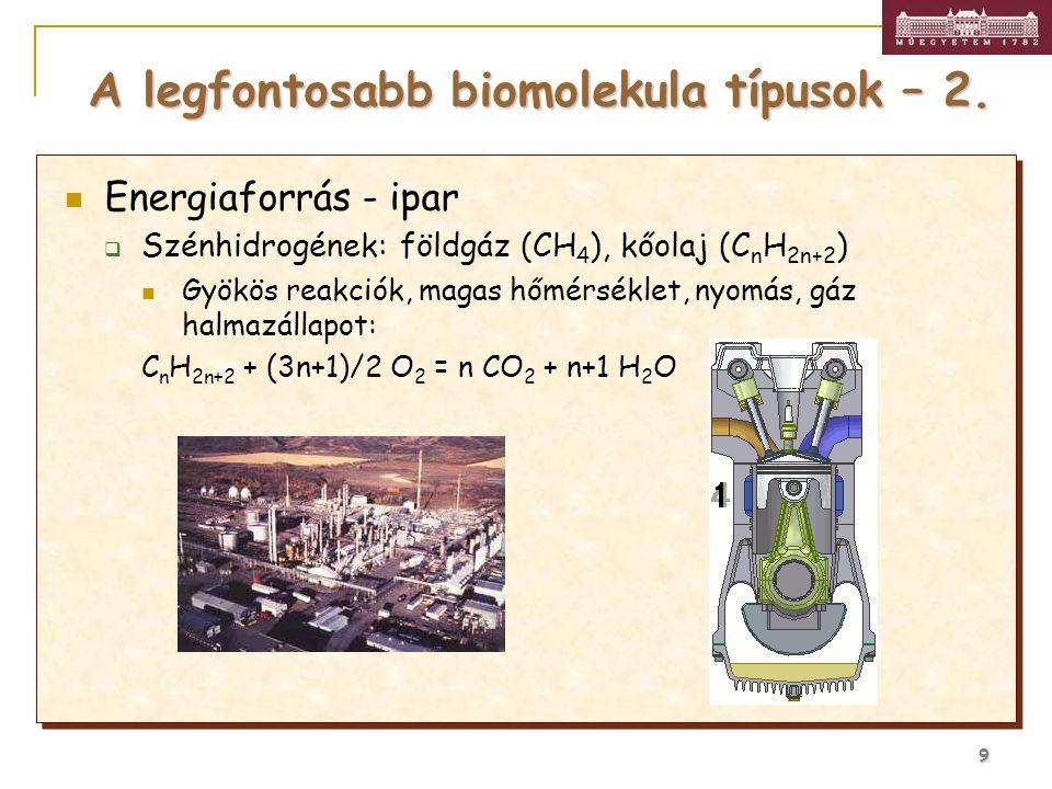 A legfontosabb biomolekula típusok – 2.