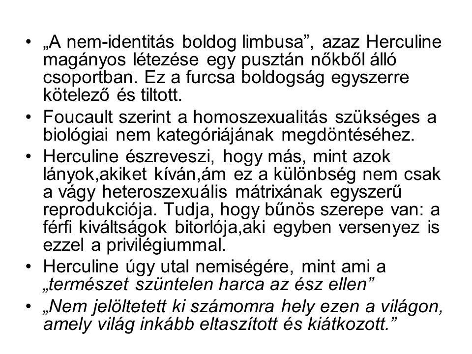 """""""A nem-identitás boldog limbusa , azaz Herculine magányos létezése egy pusztán nőkből álló csoportban. Ez a furcsa boldogság egyszerre kötelező és tiltott."""