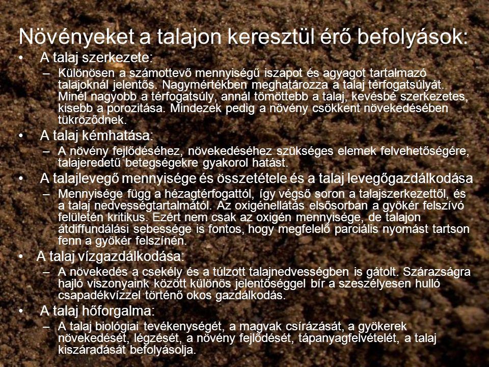 Növényeket a talajon keresztül érő befolyások:
