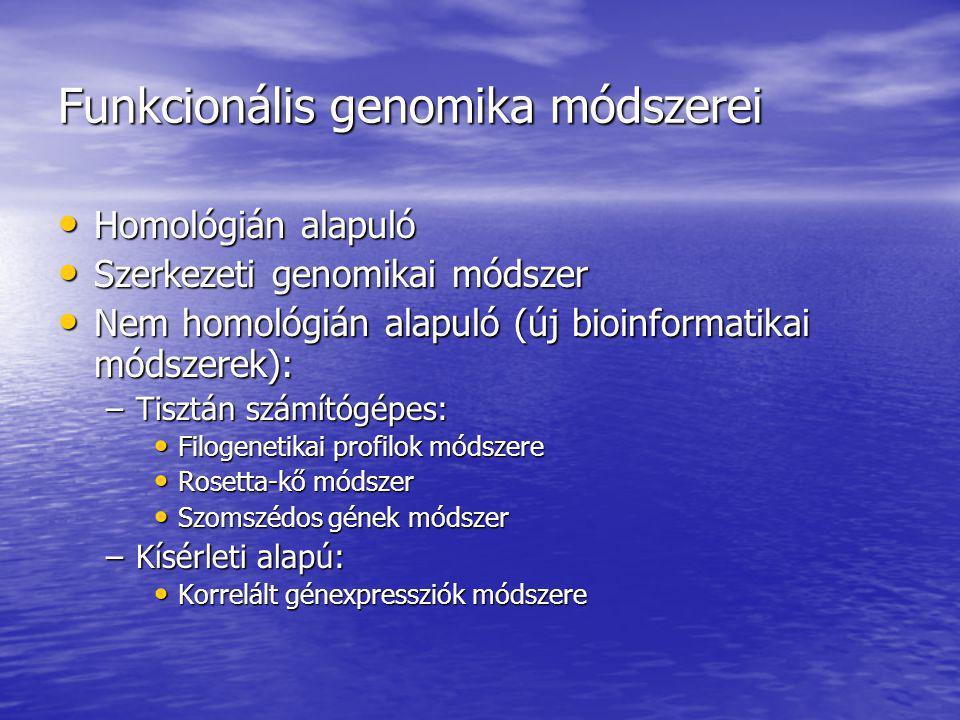 Funkcionális genomika módszerei