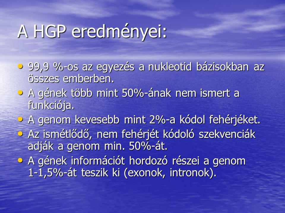 A HGP eredményei: 99,9 %-os az egyezés a nukleotid bázisokban az összes emberben. A gének több mint 50%-ának nem ismert a funkciója.
