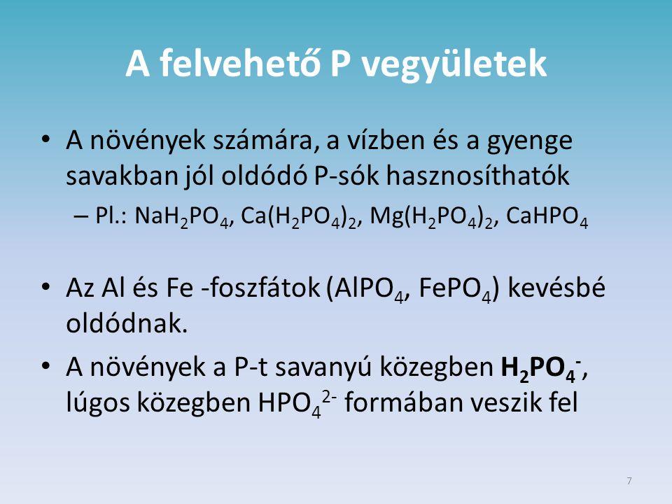 A felvehető P vegyületek