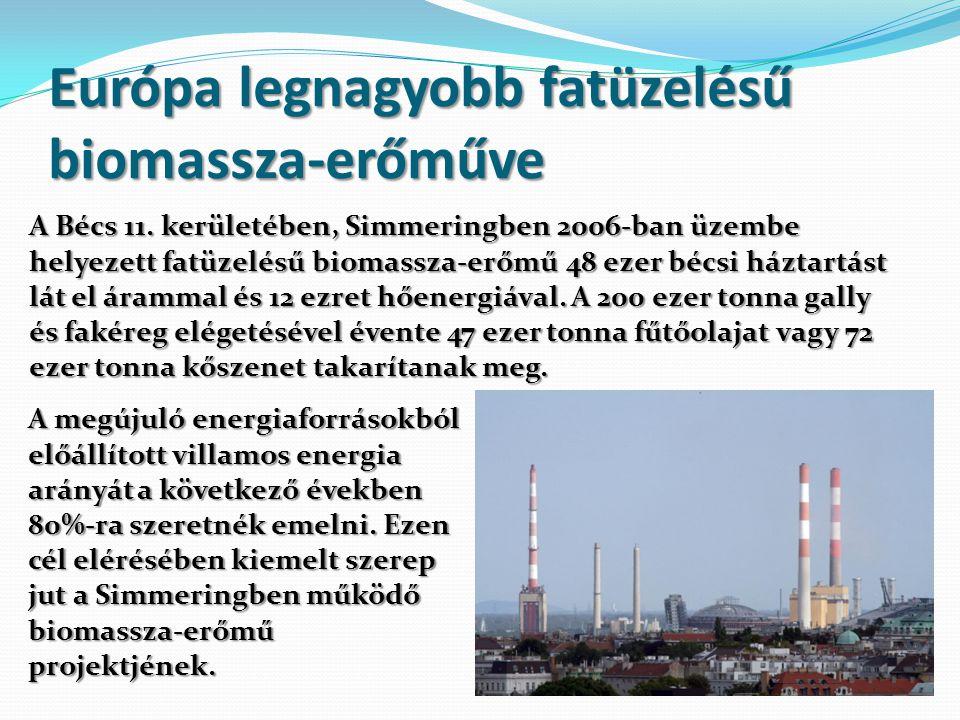 Európa legnagyobb fatüzelésű biomassza-erőműve