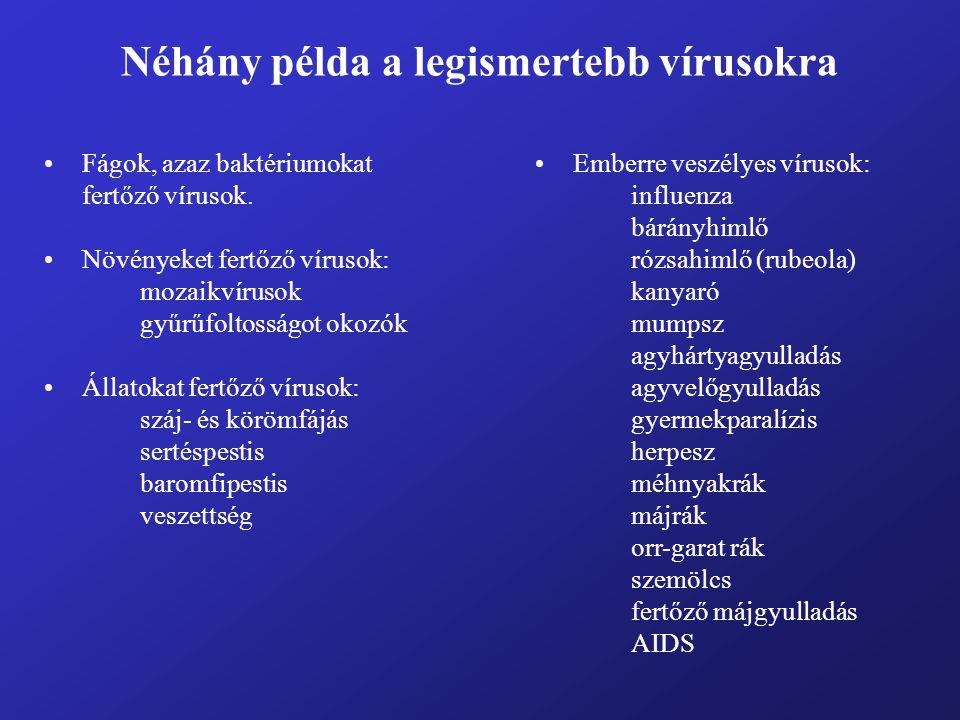 Néhány példa a legismertebb vírusokra