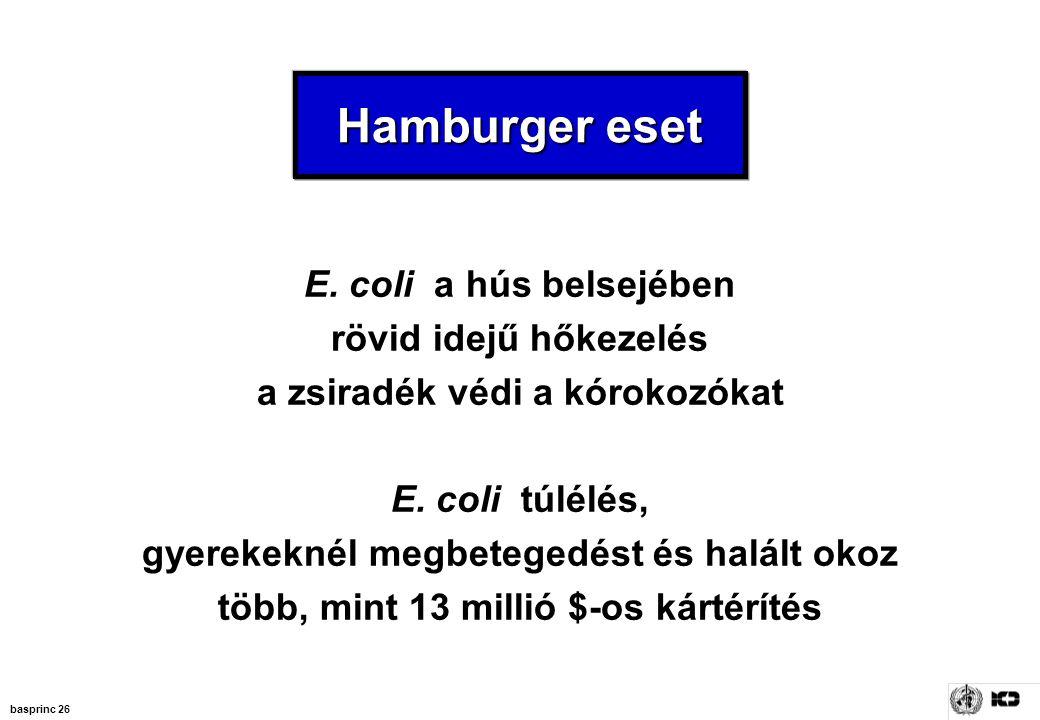 Hamburger eset E. coli a hús belsejében rövid idejű hőkezelés