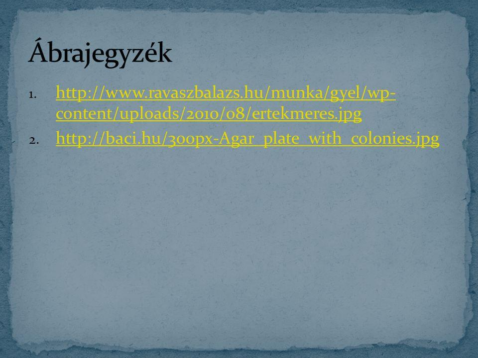 Ábrajegyzék http://www.ravaszbalazs.hu/munka/gyel/wp- content/uploads/2010/08/ertekmeres.jpg.