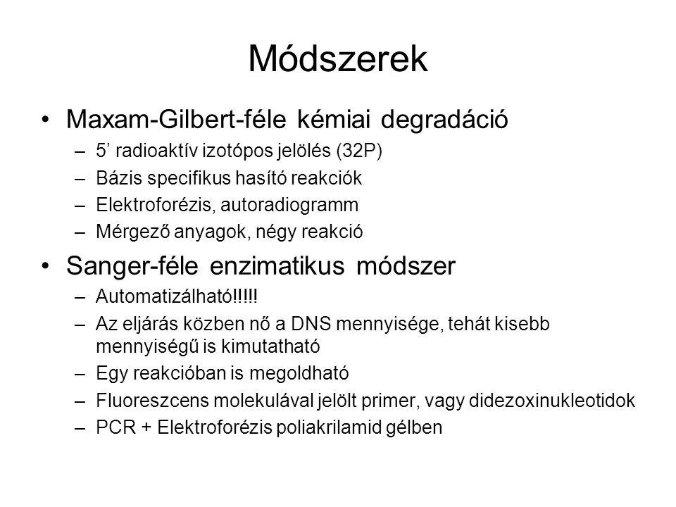 Módszerek Maxam-Gilbert-féle kémiai degradáció