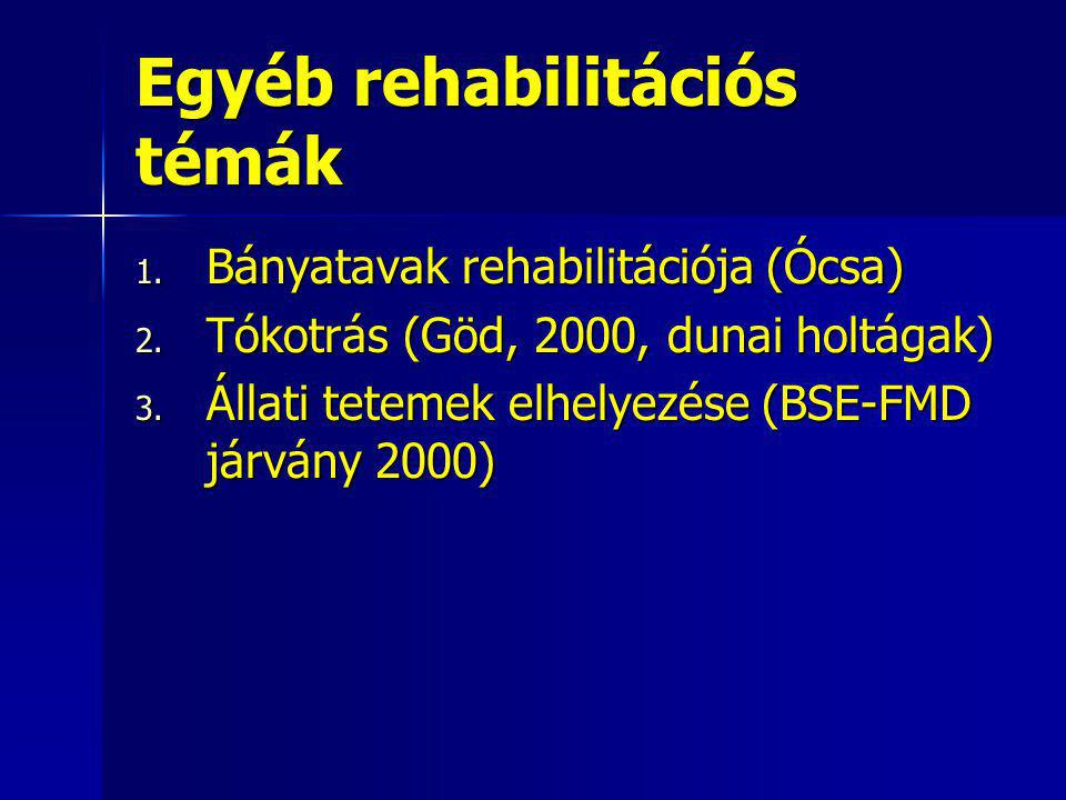 Egyéb rehabilitációs témák
