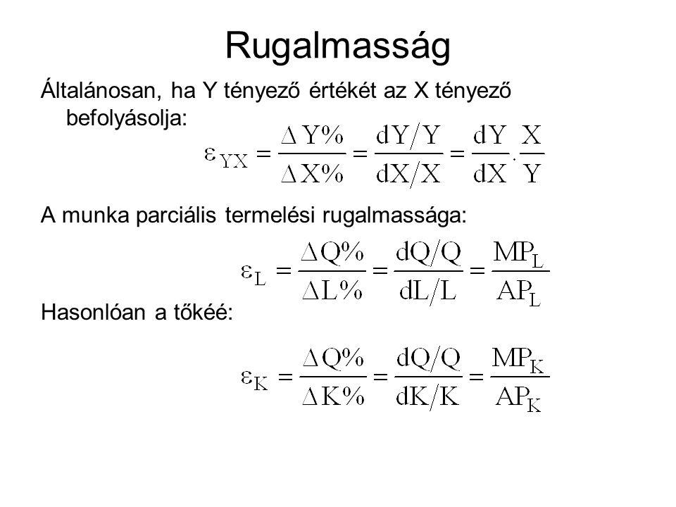 Rugalmasság Általánosan, ha Y tényező értékét az X tényező befolyásolja: A munka parciális termelési rugalmassága: