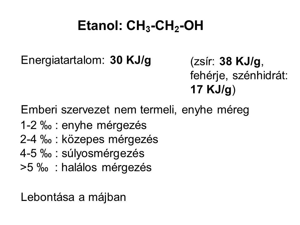 Etanol: CH3-CH2-OH Energiatartalom: 30 KJ/g (zsír: 38 KJ/g,