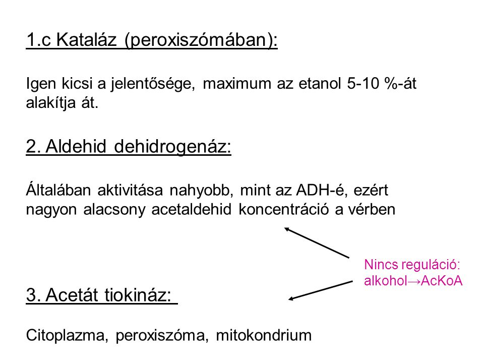 1.c Kataláz (peroxiszómában):