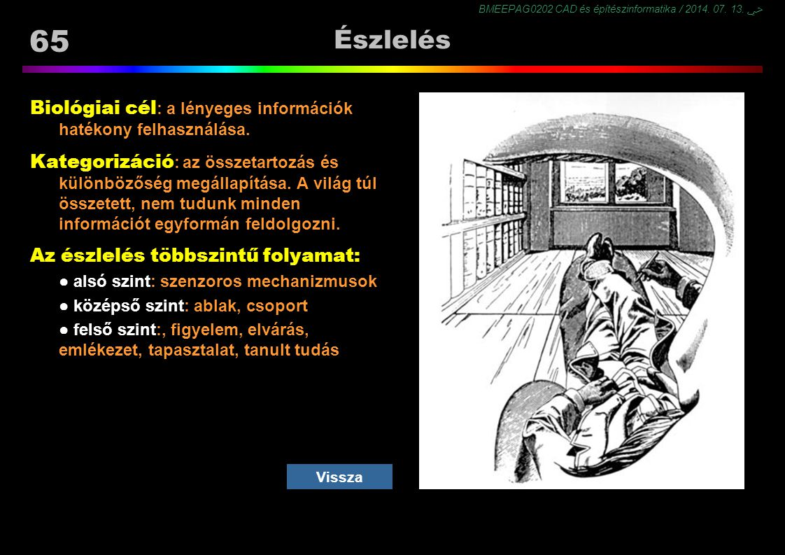 Észlelés Biológiai cél: a lényeges információk hatékony felhasználása.