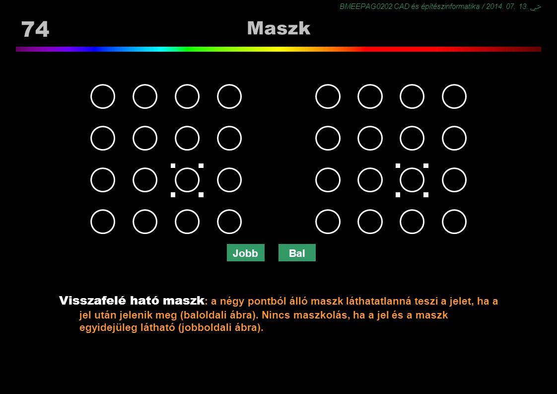 Maszk http://macknik.neuralcorrelate.com/node/6.