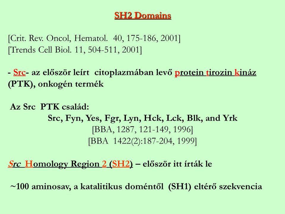Src, Fyn, Yes, Fgr, Lyn, Hck, Lck, Blk, and Yrk