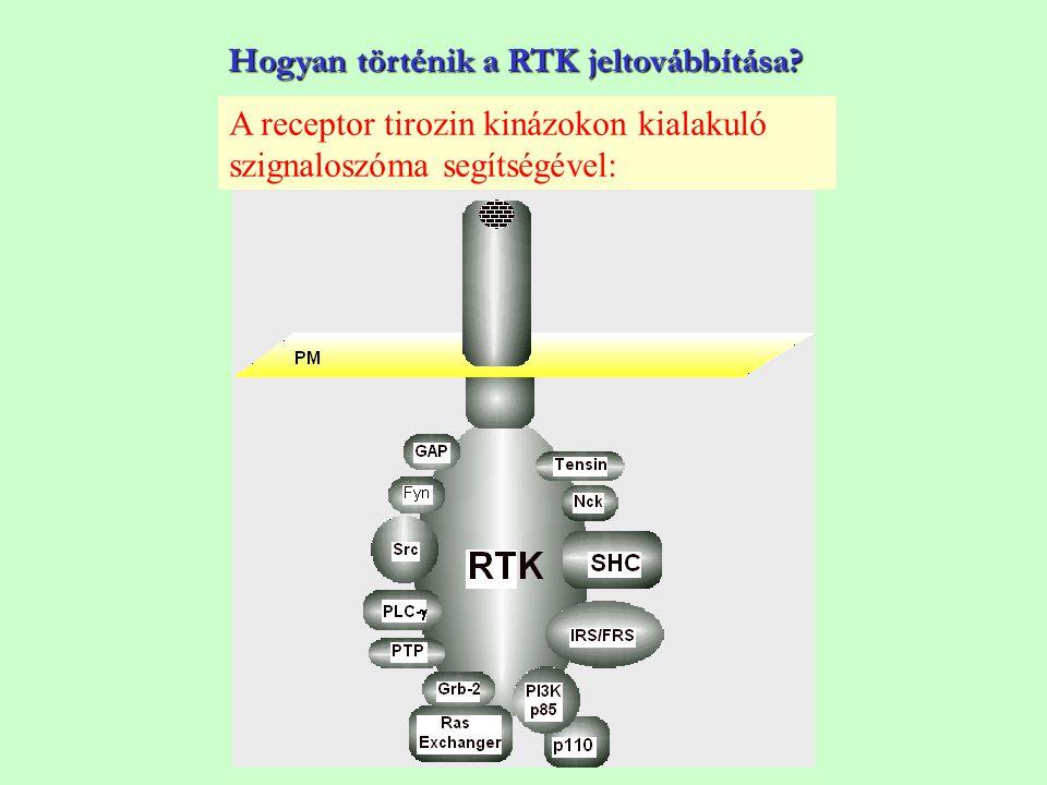 Hogyan történik a RTK jeltovábbítása