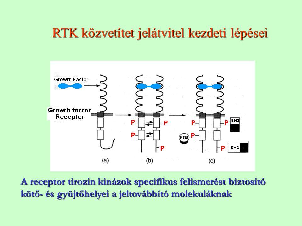 RTK közvetítet jelátvitel kezdeti lépései