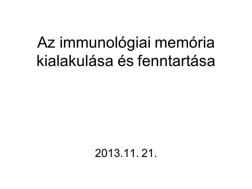 Az immunológiai memória kialakulása és fenntartása