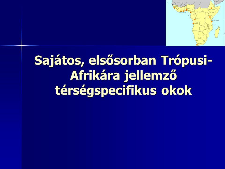 Sajátos, elsősorban Trópusi-Afrikára jellemző térségspecifikus okok