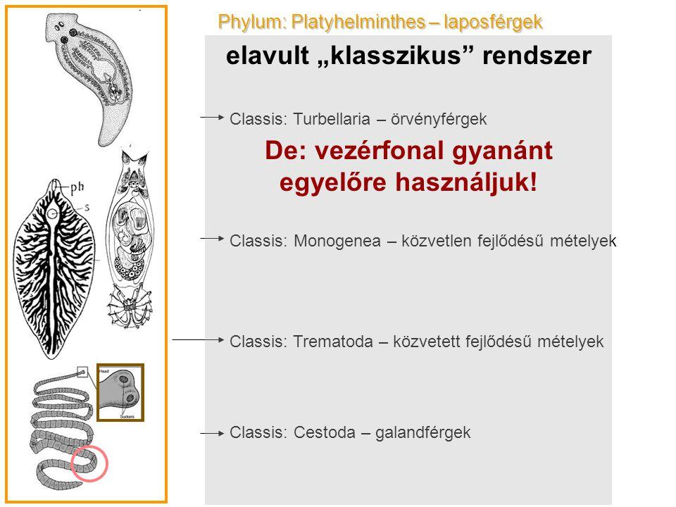 "elavult ""klasszikus rendszer"