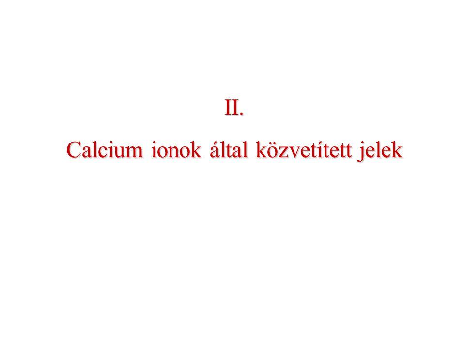 Calcium ionok által közvetített jelek