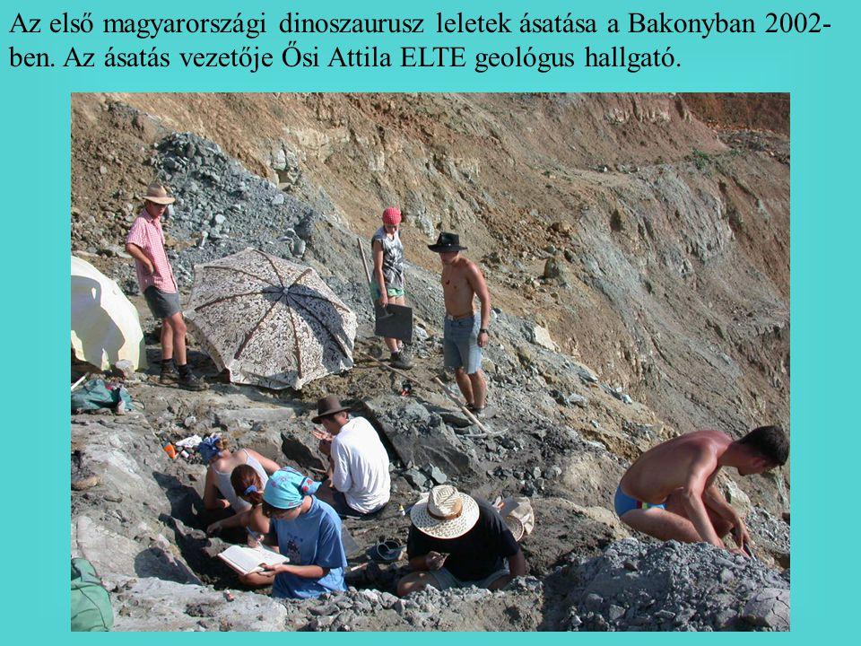 Az első magyarországi dinoszaurusz leletek ásatása a Bakonyban 2002-ben.
