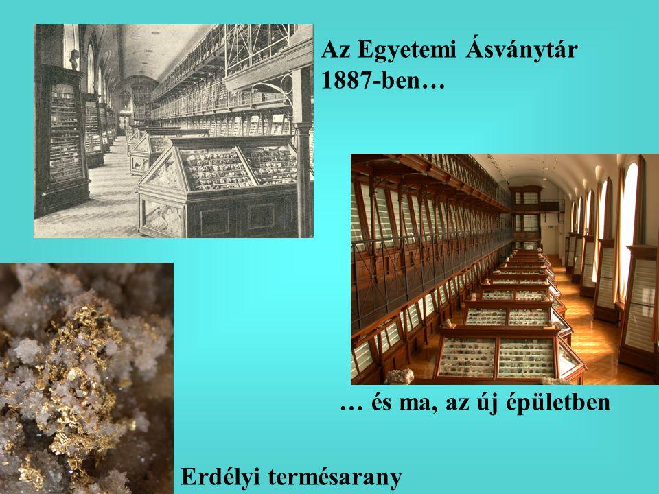 Az Egyetemi Ásványtár 1887-ben…