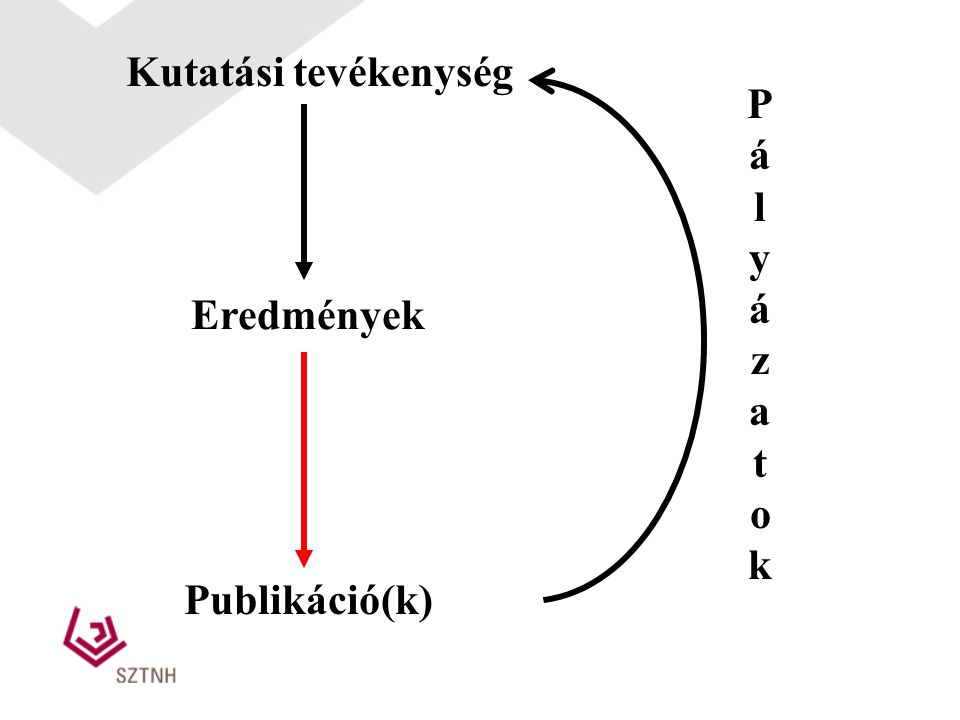 Kutatási tevékenység Pályázatok Eredmények Publikáció(k)