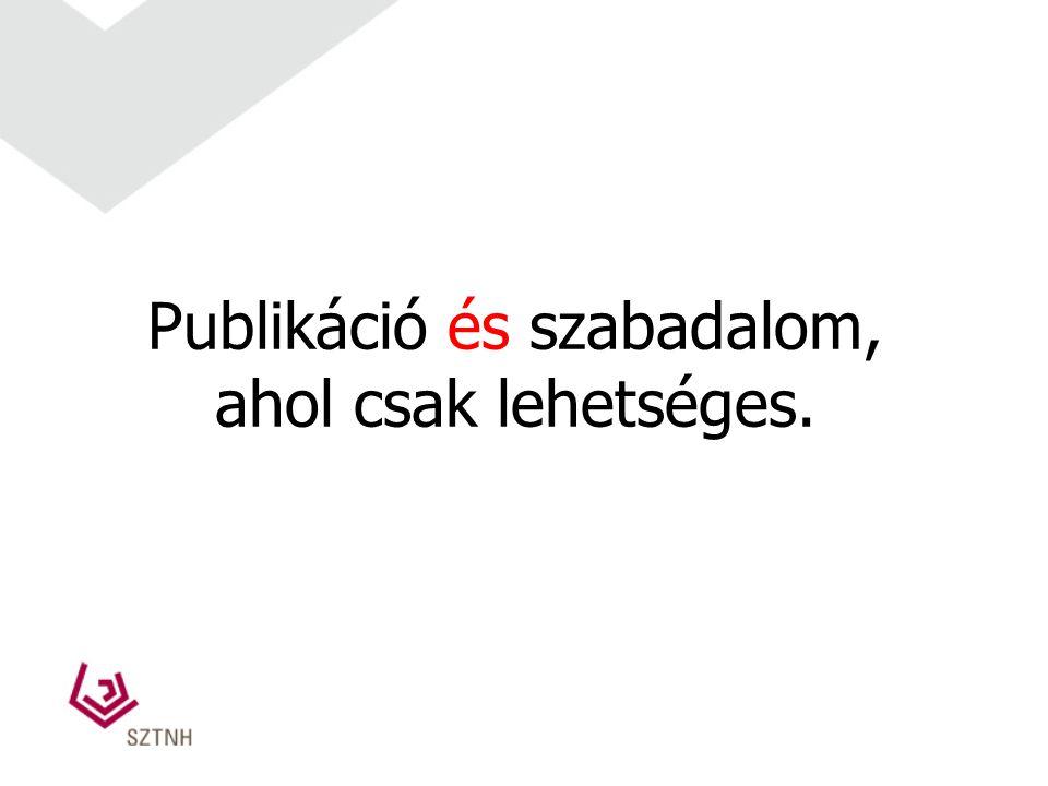 Publikáció és szabadalom,