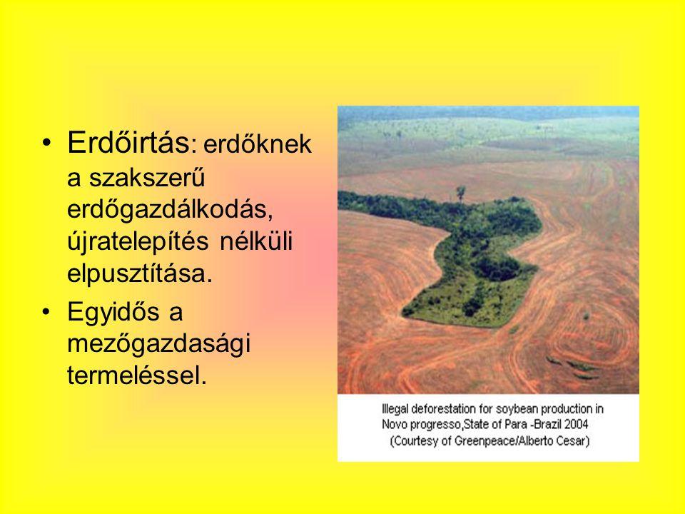 Erdőirtás: erdőknek a szakszerű erdőgazdálkodás, újratelepítés nélküli elpusztítása.
