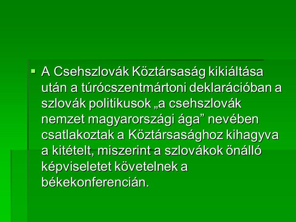"""A Csehszlovák Köztársaság kikiáltása után a túrócszentmártoni deklarációban a szlovák politikusok """"a csehszlovák nemzet magyarországi ága nevében csatlakoztak a Köztársasághoz kihagyva a kitételt, miszerint a szlovákok önálló képviseletet követelnek a békekonferencián."""