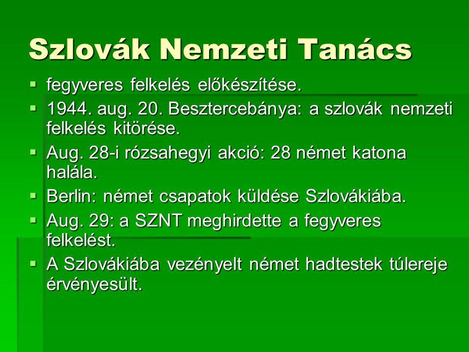 Szlovák Nemzeti Tanács