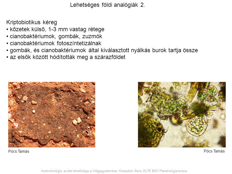 Lehetséges földi analógiák 2.