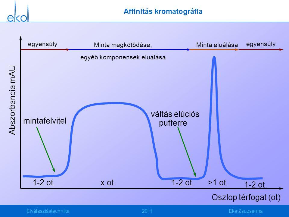 Affinitás kromatográfia