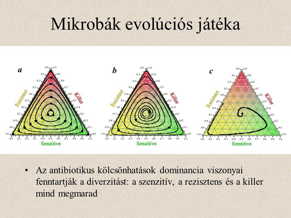 Mikrobák evolúciós játéka