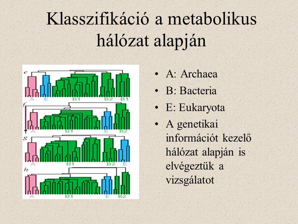 Klasszifikáció a metabolikus hálózat alapján