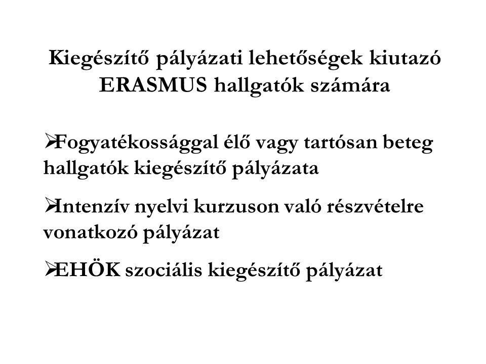 Kiegészítő pályázati lehetőségek kiutazó ERASMUS hallgatók számára