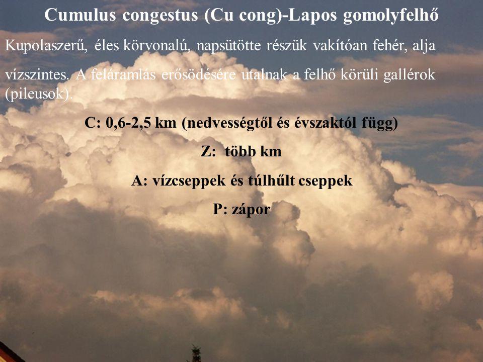 Cumulus congestus (Cu cong)-Lapos gomolyfelhő