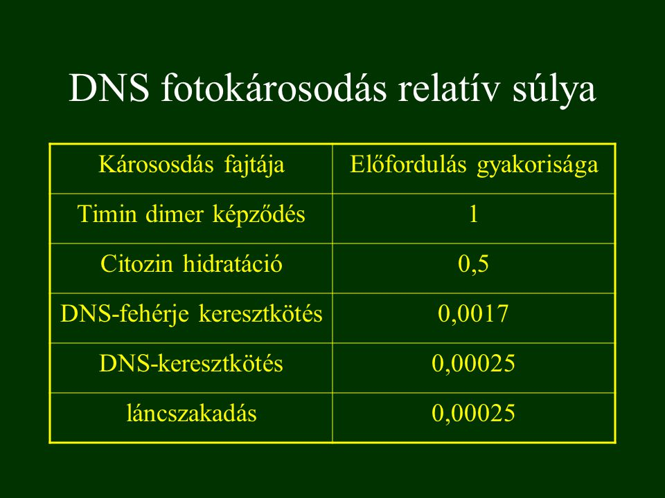DNS fotokárosodás relatív súlya