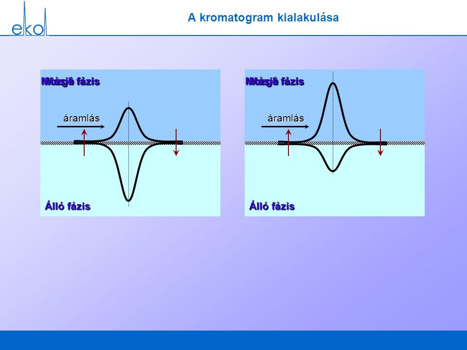 A kromatogram kialakulása