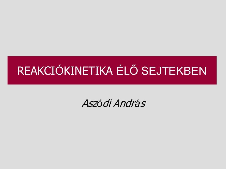 REAKCIÓKINETIKA ÉLŐ SEJTEKBEN