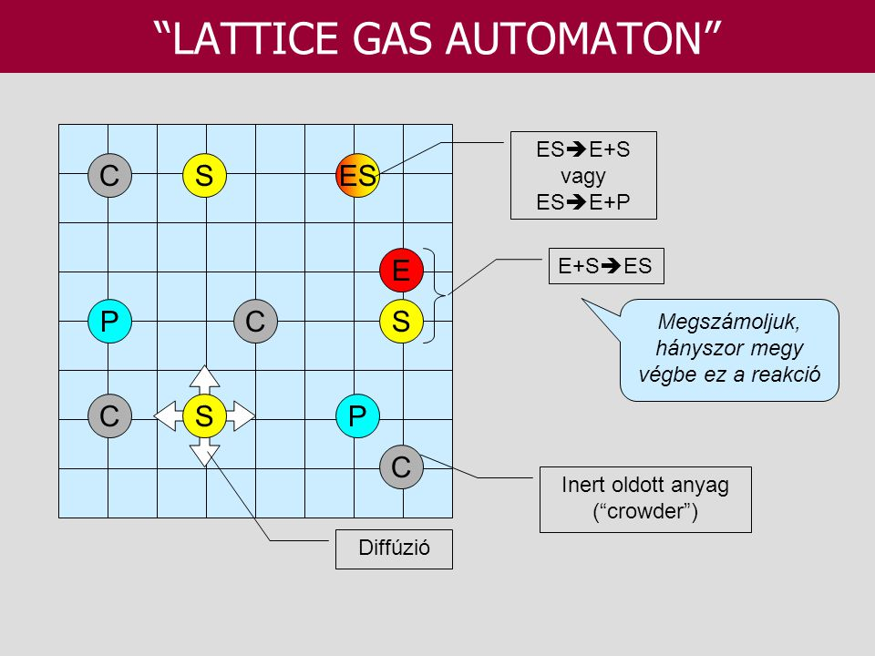 LATTICE GAS AUTOMATON