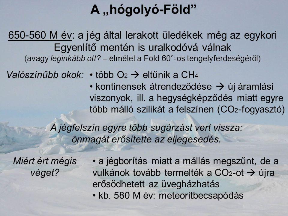 """A """"hógolyó-Föld 650-560 M év: a jég által lerakott üledékek még az egykori Egyenlítő mentén is uralkodóvá válnak."""